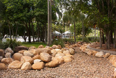 Tropical garden with palms and rocks. Tropical garden with rocks and stones for drainage during wet season at Brisbane Southbank parkland Stock Images