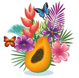 Tropical garden with papaya. Vector illustration design fruits, leaves and flowers, summer and exotic concept Stock Images