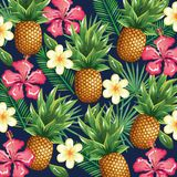 Tropical garden with pineapple. Vector illustration design fruits, leaves and flowers, summer and exotic concept Stock Photos