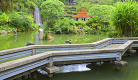 Tropical garden with pond and waterfall Royalty Free Stock Photography