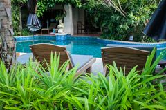 Tropical garden with a pool and sun loungers in a vignette of flowers. Royalty Free Stock Photography