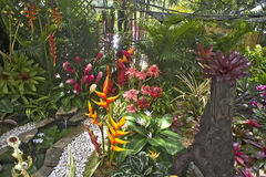 Tropical  garden shown at Flowers Festival, Puerto Rico. Tropical flower arrangement in the montainous city of Aibonito where Flowers Festival takes place yearly Royalty Free Stock Photography