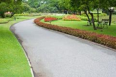 Tropical garden in summer Stock Image
