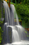 Tropical garden waterfall. Stock Photography