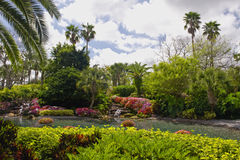 Tropical gardens Royalty Free Stock Photography