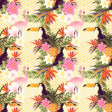 Tropical Geometric Floral Stock Photos