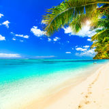 Tropical getaway - perfect beach with turquoise waters Stock Photos
