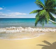 Tropical golden sand beach Royalty Free Stock Photos
