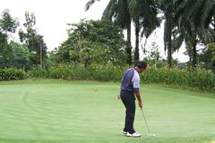 Tropical golf Stock Images