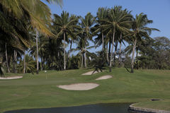 Tropical Golf Course Royalty Free Stock Images