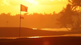 Tropical golf course lake, palm trees and golden sunset. Dominican Republic, Punta Cana