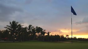 Tropical golf course, palm trees and golden sunset. Dominican Republic, Punta Cana.  stock video footage