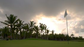 Tropical golf course at sunset, Dominican Republic, Punta Cana.  stock video footage
