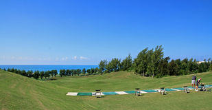 Tropical golf driving range in Bermuda. A driving range on a tropical golf course, with the ocean ion the horizon Royalty Free Stock Images