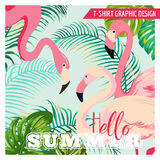 Tropical Graphic Design - Flamingo Stock Photography