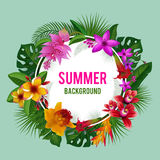 Tropical graphics. Exotic spring or summer flowers background vector illustration. Flower blossom wreath, round frame bloom wreath Royalty Free Stock Images