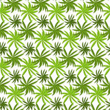 Tropical grass field seamless pattern. Royalty Free Stock Images