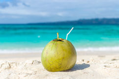 Tropical green coconut with straw on white exotic sandy beach Stock Images