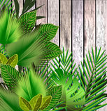Tropical green leaves illustration over wood Royalty Free Stock Photo