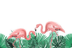 Tropical green leaves pink flamingo footer element Stock Images