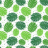 Tropical green leaves seamless pattern Royalty Free Stock Photos