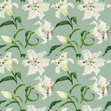 Tropical green seamless pattern with white lily