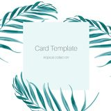 Tropical greenery palm tree leaves card template. Card template with fern greenery exotic tropical jungle royal palm tree leaves branch. Simple minimalistic blue Royalty Free Stock Image