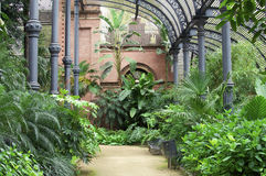 Tropical greenhouse in the Parc de la Ciutadella Royalty Free Stock Photos