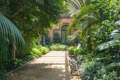 Tropical greenhouse in the Parc de la Ciutadella, Barcelona Stock Photos