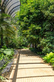 Tropical greenhouse in the Parc de la Ciutadella, Barcelona Royalty Free Stock Photo