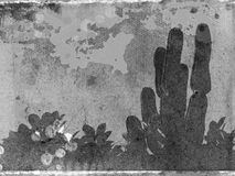 Tropical grunge gray-scale. Gray-scale grunge texture with cactus - for photo manipulation Royalty Free Stock Images