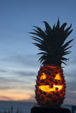 Tropical Halloween Royalty Free Stock Image