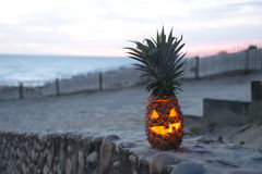 Tropical Halloween Royalty Free Stock Image