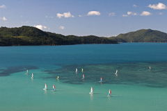 Tropical Hamilton Island Stock Images