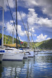 Tropical harbor. Beautiful tropical harbor lined with sailboat yachts and lush mountains in the background Stock Photo
