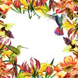 Tropical Hawaii leaves and flowers frame in a watercolor style isolated. Royalty Free Stock Photos
