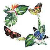 Tropical Hawaii leaves palm tree and butterflies frame in a watercolor style isolated. Stock Photography