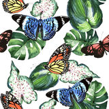 Tropical Hawaii leaves palm tree and butterflies pattern in a watercolor style isolated. Royalty Free Stock Photography