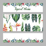 Tropical Hawaii leaves palm tree theme in a watercolor style isolated. Stock Image