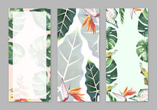 Tropical Hawaii leaves palm tree theme in a watercolor style isolated. Royalty Free Stock Photography