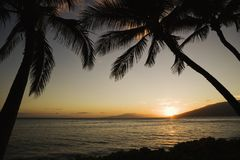 Tropical Hawaiian sunset. Stock Photography