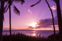 Tropical Hawaiian Sunset Royalty Free Stock Photography