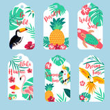 Tropical Hawaiian tags with toucan, flamingo, parrots and pineaaple Stock Photo