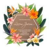 Exotic plants border with text place, bouquet. stock images