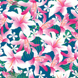 Tropical hibiscus floral 3 seamless pattern Royalty Free Stock Photography