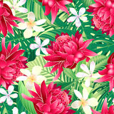 Tropical hibiscus floral 7 seamless pattern Royalty Free Stock Photos