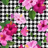 Tropical Hibiscus Flower Seamless Pattern. Floral Geometrical Summer Background for Fabric Textile, Wallpaper, Decor. Wrapping Paper. Watercolor Botanical Royalty Free Stock Photo