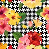 Tropical Hibiscus Flower Seamless Pattern. Floral Geometrical Summer Background for Fabric Textile, Wallpaper, Decor. Wrapping Paper. Watercolor Botanical Stock Image