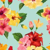 Tropical Hibiscus Flower Seamless Pattern. Floral Summer Background for Fabric Textile, Wallpaper, Decor, Wrapping. Paper. Watercolor Botanical Design. Vector Stock Image