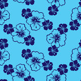 Tropical Hibiscus flowers. Pattern design Royalty Free Stock Photos